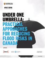 Under One Umbrella report cover