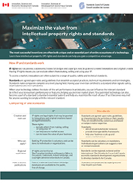 Standards and IP cover page