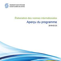 Élaboration des normes internationales - Aperçu du programme